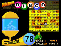 Bingo Night DVD fundraising ideas