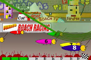 Fundeo Roach Racing Race Night